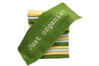 Afbeelding van Handdoekje Just organic!