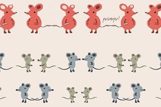 Afbeelding van Twin mouse interlock