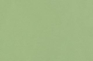 Afbeelding van Nile Green voile