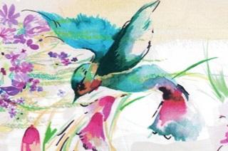 Afbeelding van Kolibrie poplin