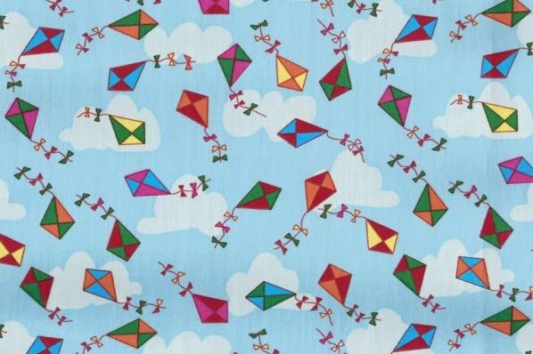vliegers poplin c pauli gots pure coverzafbeelding van vliegers poplin