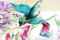 Hummingbird voile