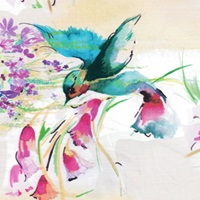 Hummingbird voile-2