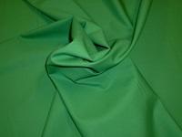 Medium Green poplin-2