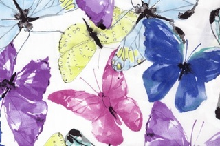 Picture of Butterfly voile