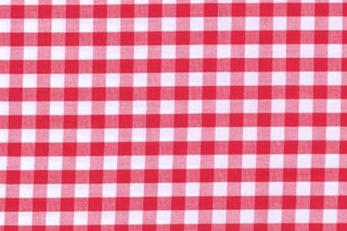 Picture of Bittersweet Red Check poplin