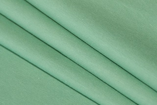 Picture of Pistachio stretch jersey