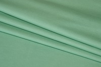 Pistachio jersey (soft touch)-2