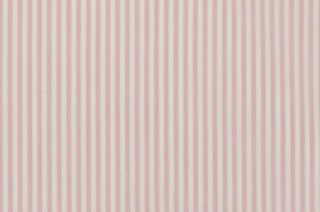 Picture of Candy Pink Stripe poplin