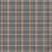 Smoke Grey-Black checked flannel-2