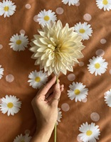 Oopsie Daisy duvet cover percale-2
