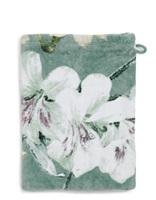 Rosalee Green badgoed velours-2