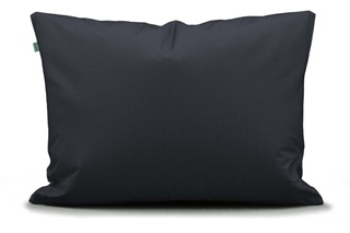 Picture of Two in One Blue pillowcase percale